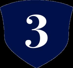 Sheild Icon 3