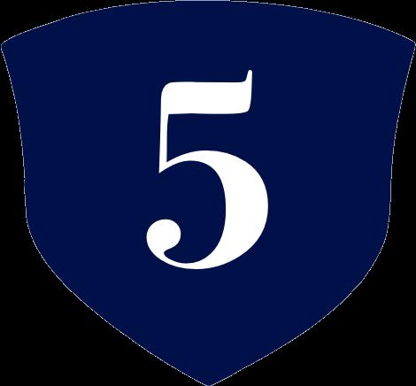 Sheild Icon 5