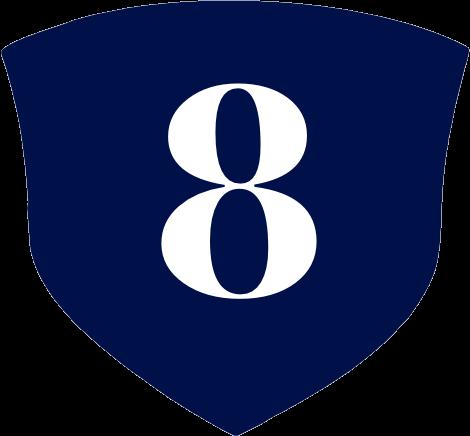 Sheild Icon 8